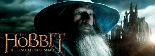 the_hobbit_desolationofsmaug_web